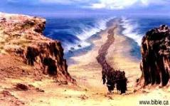 crossing of the red sea 1