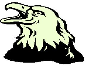eagle crying out