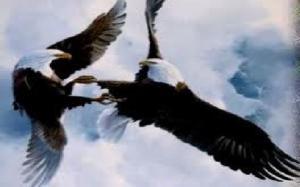 eagle Romance 3