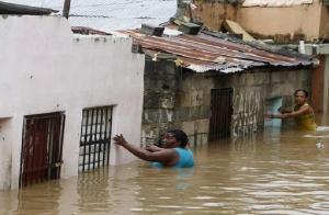 savagery and reality of sandy