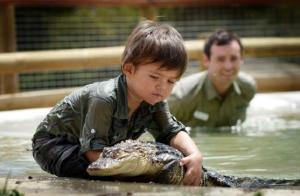 crocodile boy 3