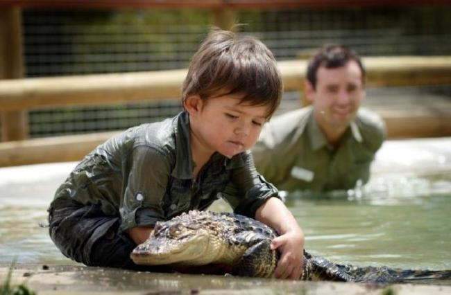 crocodile boy 3