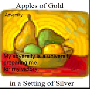adversity a uni