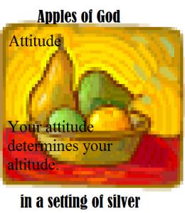 attitude1