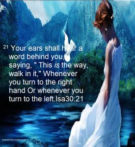 god's guidance3