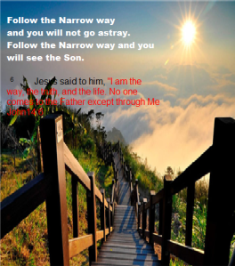 narrow way2