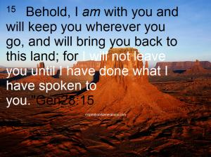prophetic2 gen28 15