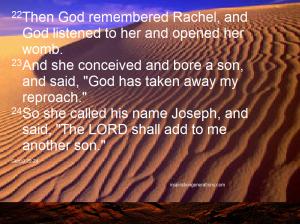 prophetic6 gen30 22-24