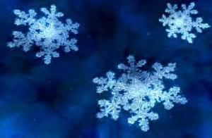 winter 1 - Copy