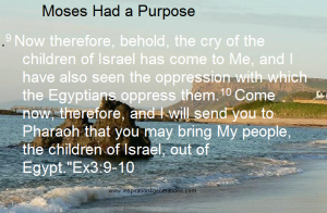 Moses had a purpose