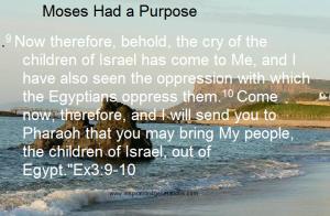 Moses had a purpose