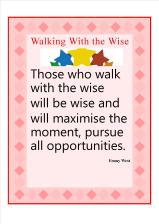 wise7